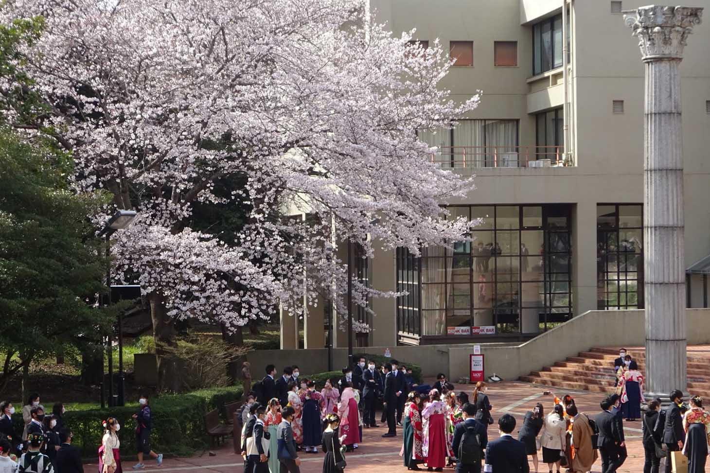 Université de Tsukuba. Photo : S. Kuroda